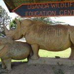 Enjoy the Entebbe city tour adventure on your safari Uganda – Uganda Safari News