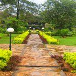 A one stop free resting place in Kampala; Centenary Park Kampala – Uganda safari News